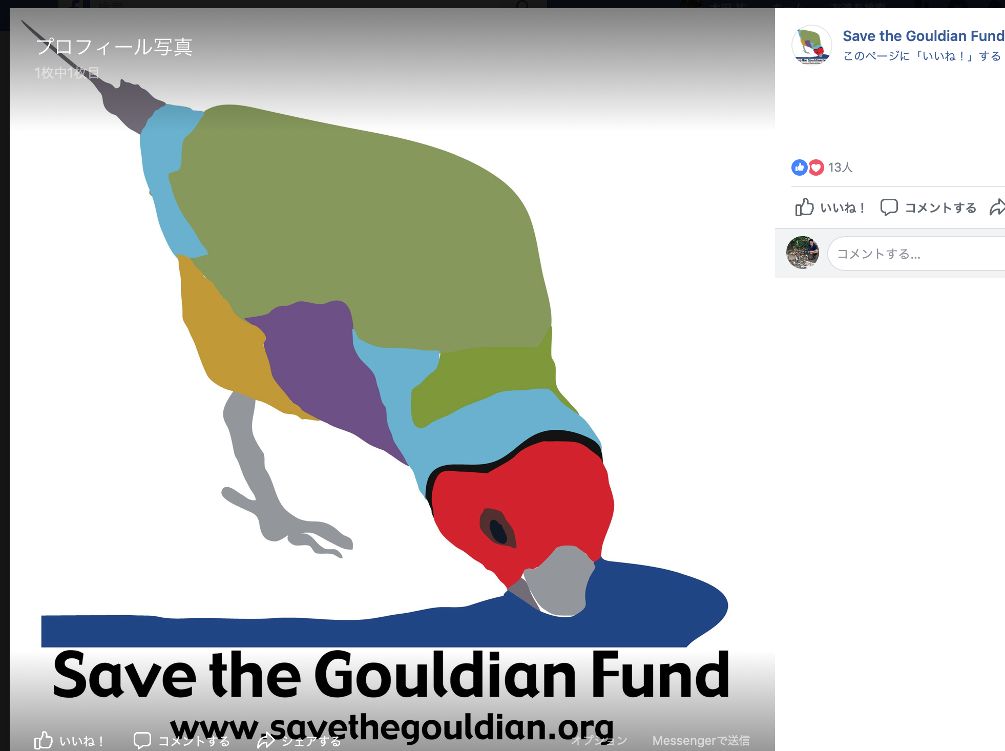 Save the Gouldian Finch Fund