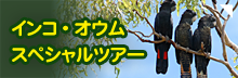 インコ・オウムスペシャルツアー