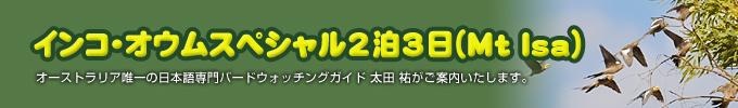 インコ・オウムスペシャル2泊3日(Mt Isa)
